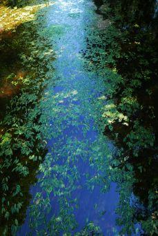 coulée bleue